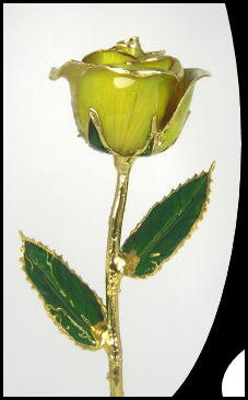 "11"" Yellow Gold Rose of Texas"